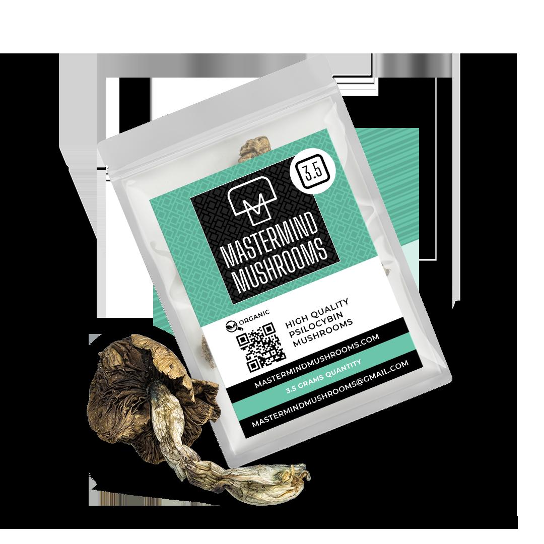 Mastermind Mushrooms Label Dried Mushrooms 3